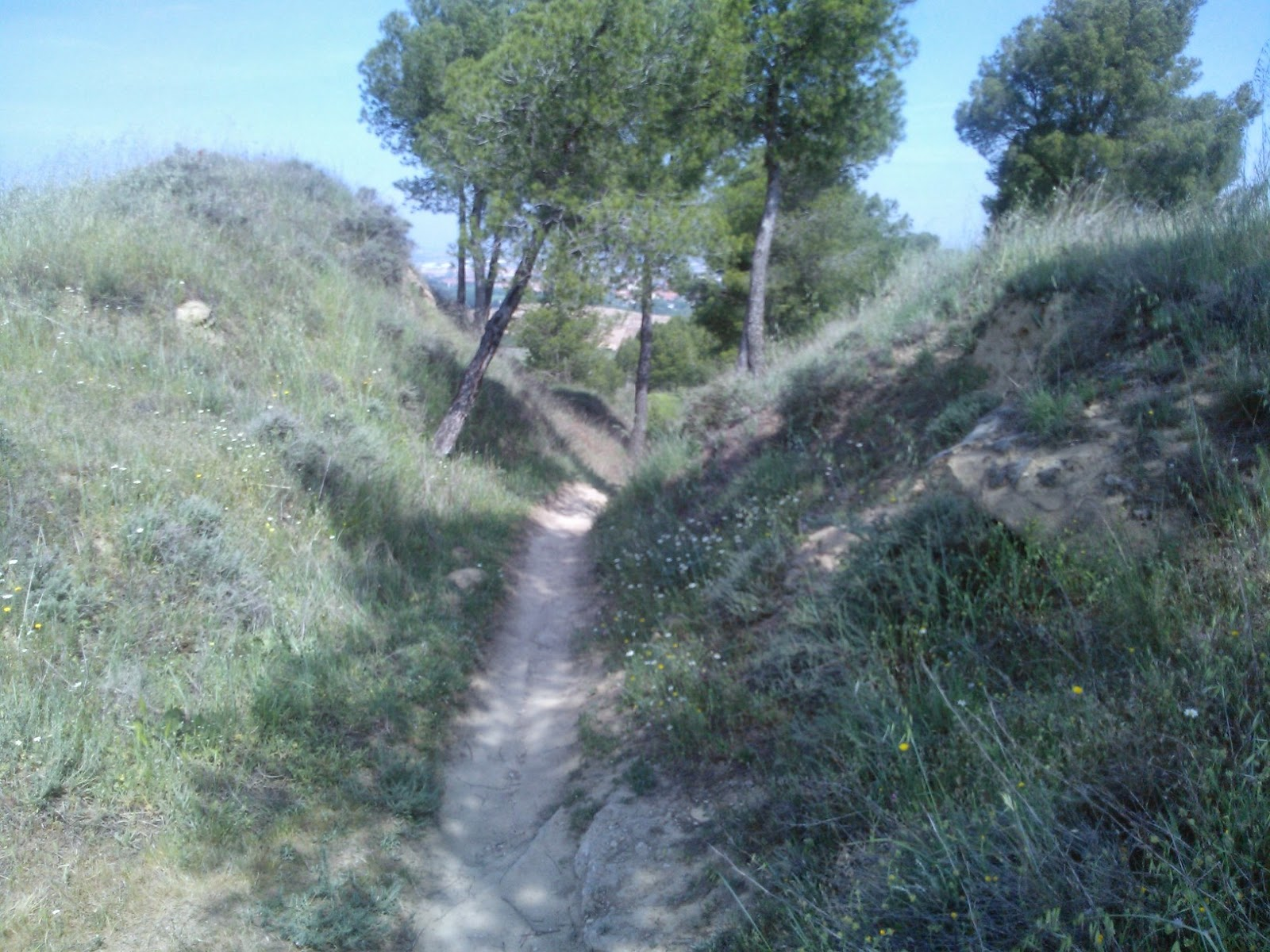 alto erótica pequeño cerca de Alcalá de Henares