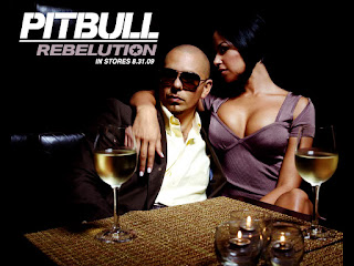 Pitbull Rebelution HD Wallpaper