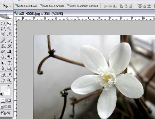 Cara mempertajam warna foto dengan photoshop
