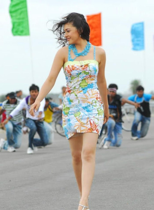 hansika hot photoshoot