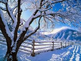 * WINTER Landscape *