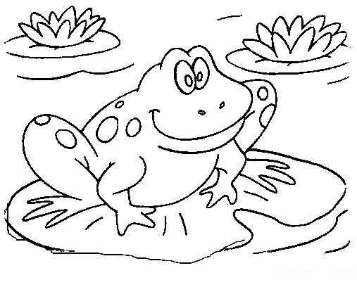 cutefrogcoloringbooksforkids1 frog_coloring_pages_animal_3 - Coloring Pages Frogs Toads