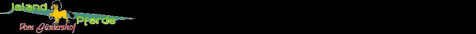 Islandpferde vom Güntershof