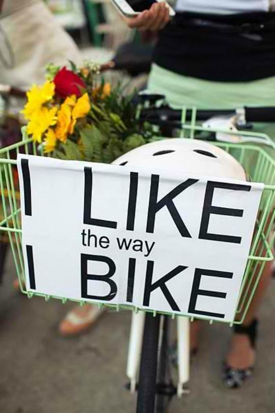 it's a ladies bike bloggy blog world