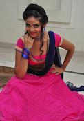 Shreya Vyas photos at Bengal Tiger audio-thumbnail-7