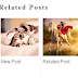 New Add Related Posts Widget To Blogger With Thumbnails