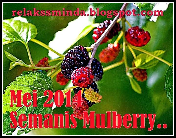 Masam Manis Mulberry Di Bulan Mei 2014