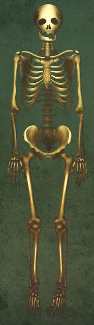 anthony caravaca thotony totony squelette EMCA IUP montauban couleur image design animation 3D
