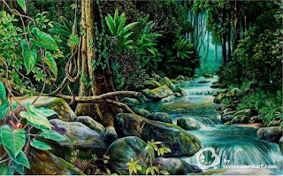 Paisaje de la selva