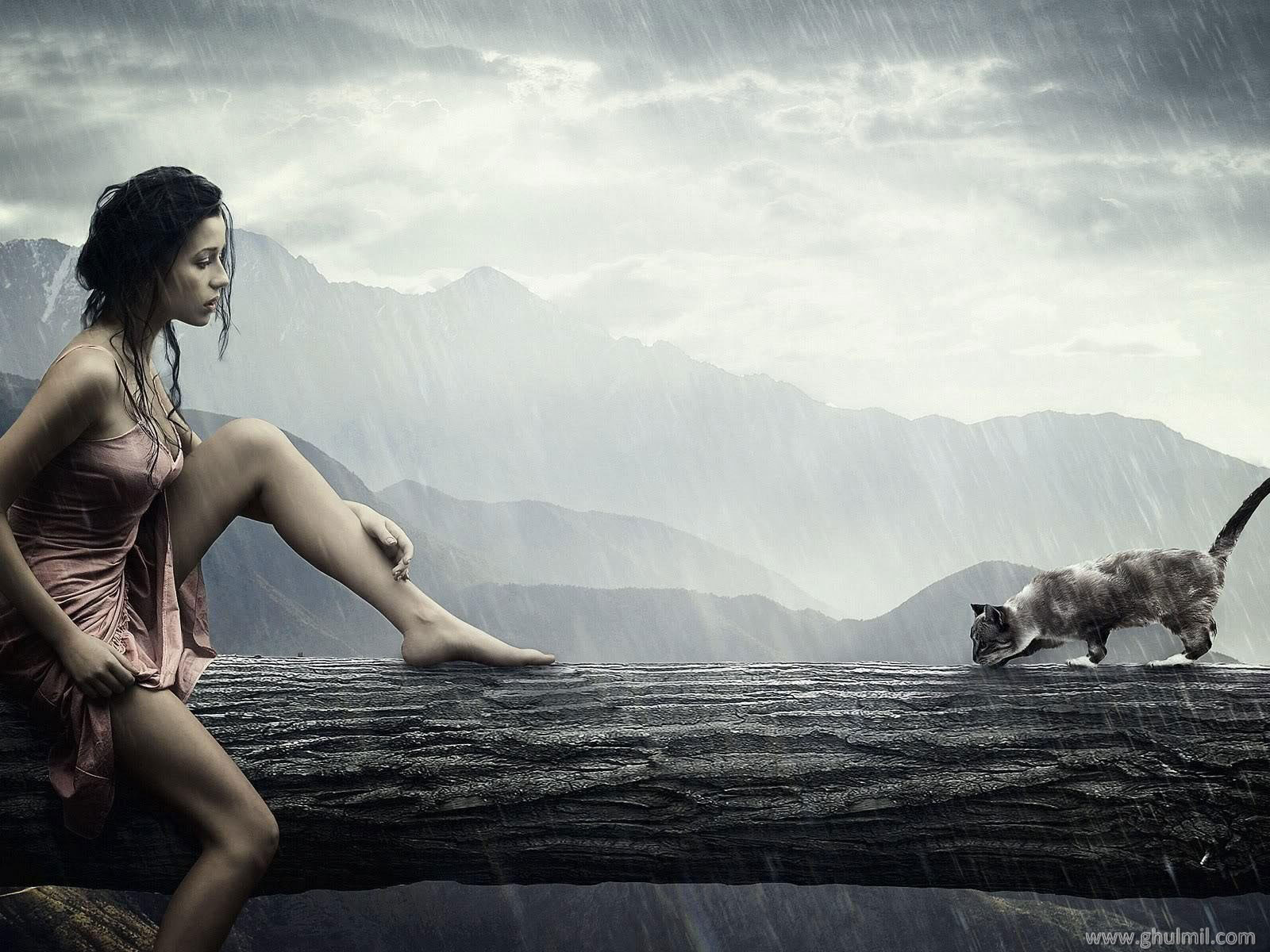 Girl &amp; Cat Heavy rain Wallpaper