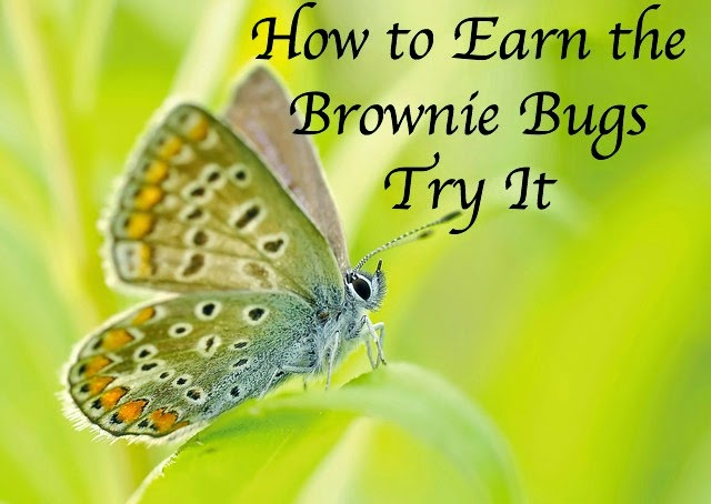 How to Earn the Brownie Bugs Try It
