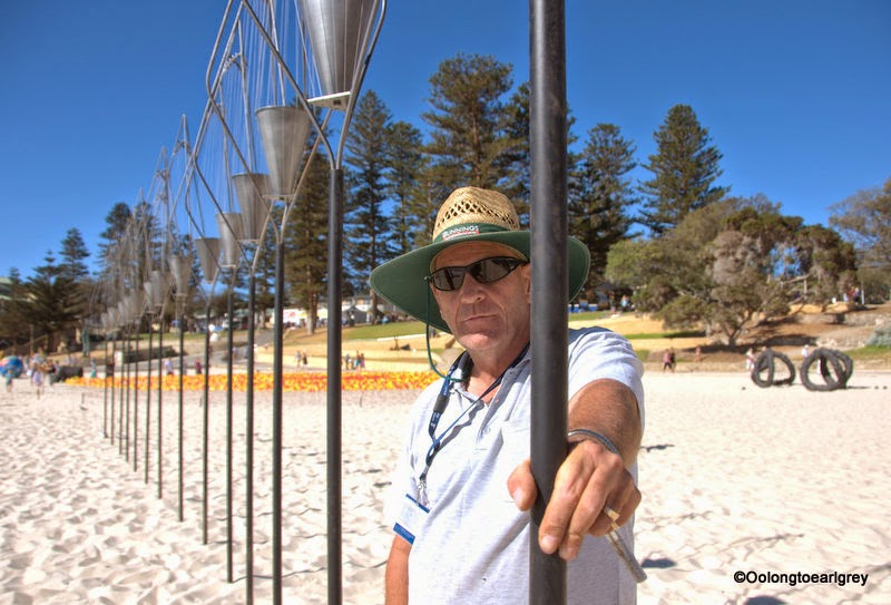 Sculpture by the sea, Cottesloe 2014, windsong