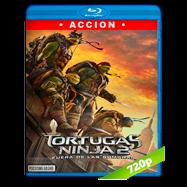 Tortugas Ninja 2: Fuera de las sombras (2016) BRRip 720p Audio Dual Latino-Ingles