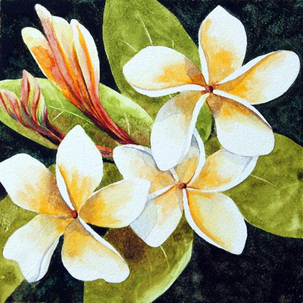 Nancy Goldman Art: Tropical Fragrance - Watercolor