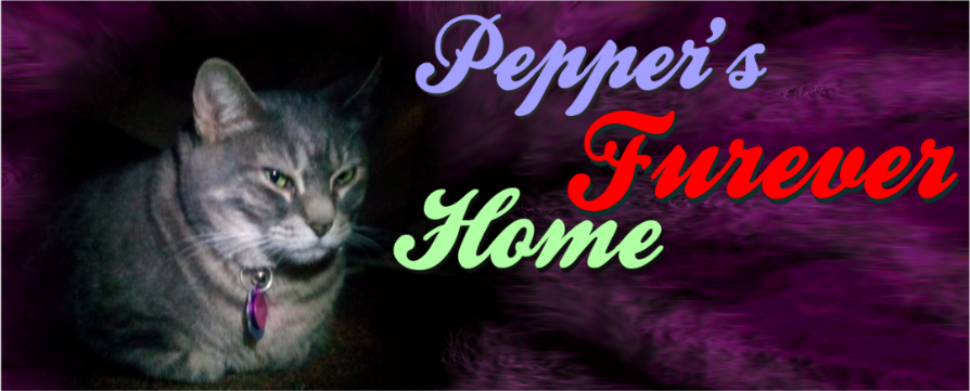 Pepper's Furever Home