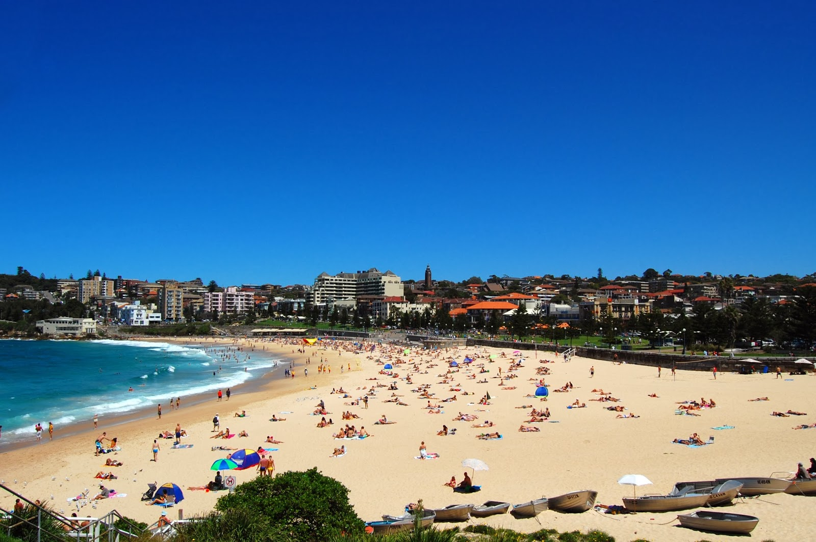 beaches near sydney