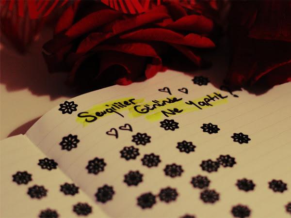 La Mancha'da Sevgililer Günü