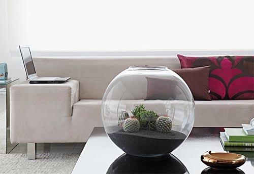 mini jardim de vidro : mini jardim de vidro:Mini jardim! Terrário