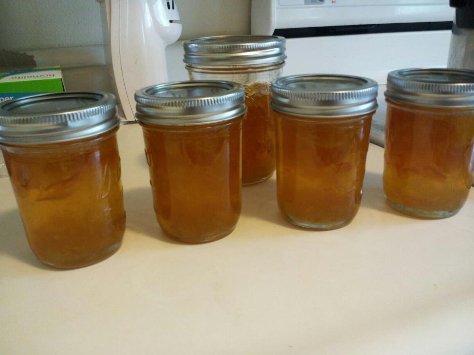 esther 39 s canning cooking preserving blog oranges orange marmalade. Black Bedroom Furniture Sets. Home Design Ideas