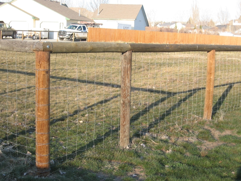 Project freedom ranger finally finished fencing the field