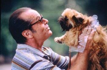 Los 10 Animales más Famosos del Cine