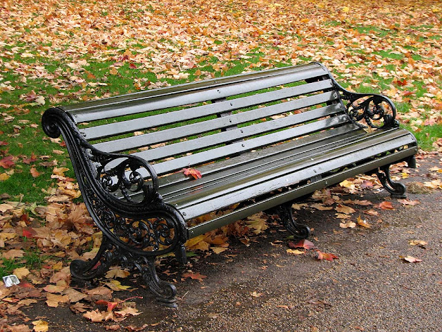 Bench and dead leaves, Kensington Gardens London