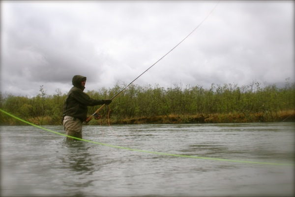 Oregon fly fishing report by larimer outfitters sandy for Sandy river fishing