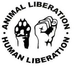 NÃO a Vivissecção e Experiências em Animais