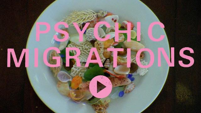 volcom Psychic Migrations