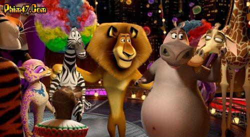 Xem phim Madagascar 3: Thần Tượng Châu Âu