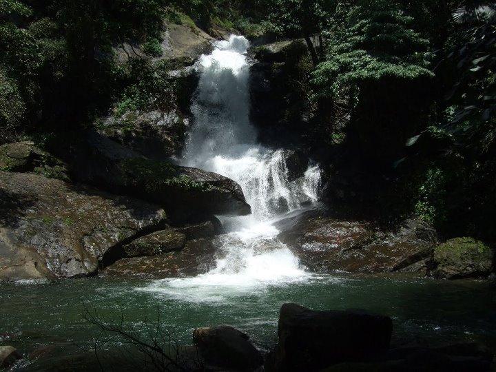 Meenvallam Waterfalls Palakkad Kerala Entertainment Enter