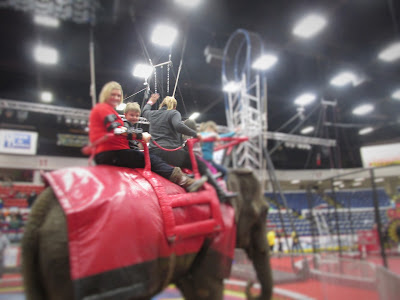 Grandson riding elephant at the circus-Frugal Ways this Past Week and No Spend January Week #3 Vickie's Kitchen and Garden