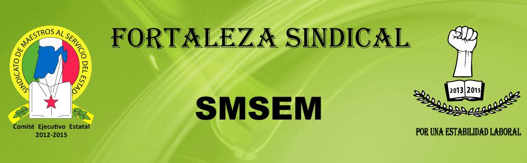 Fortaleza Sindical  SMSEM