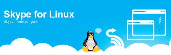 Skype 4.0 for Linux