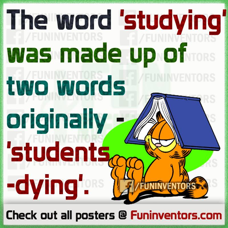 Studying... students dying