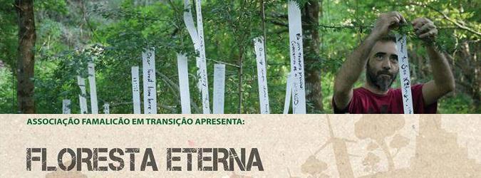 Eternal Forest 26/10