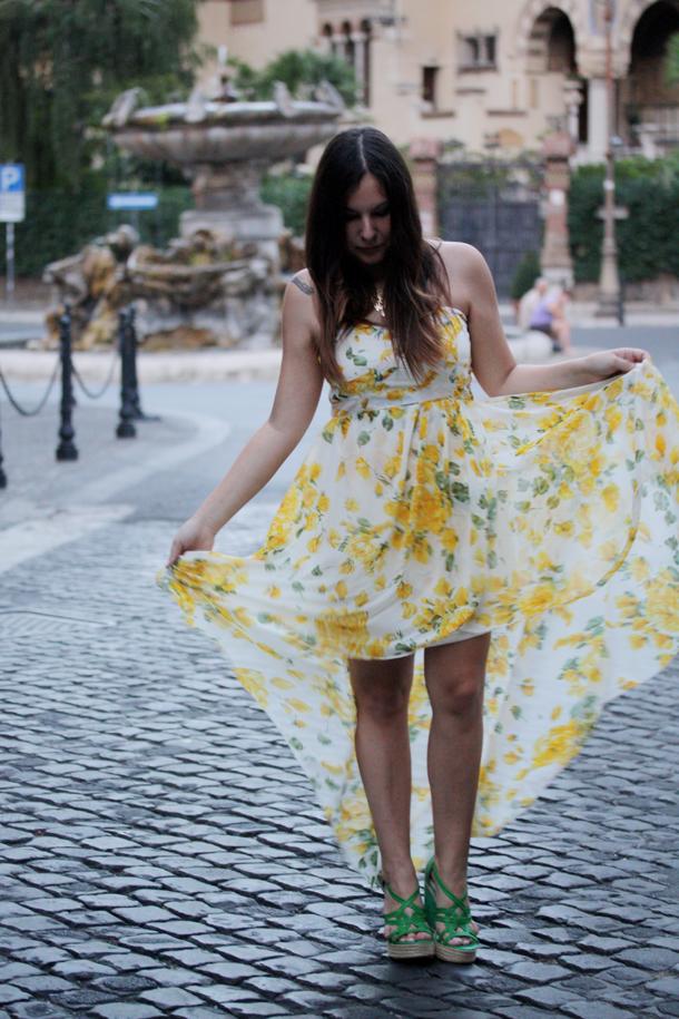 fiori gialli roma