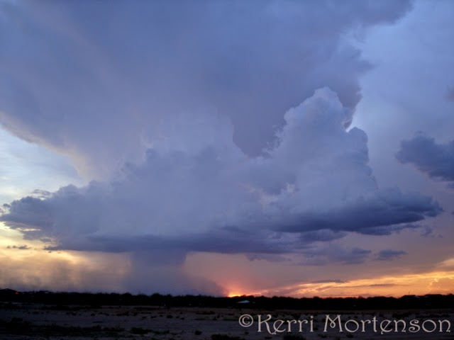 http://kerri-mortenson.artistwebsites.com/featured/desert-rainstorm-2-kerri-mortenson.html