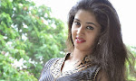 Pavani glam pics at Donga prema press meet-thumbnail