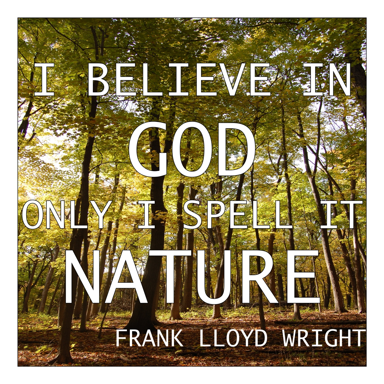 Wordless Wednesday   Frank Lloyd Wright Quote
