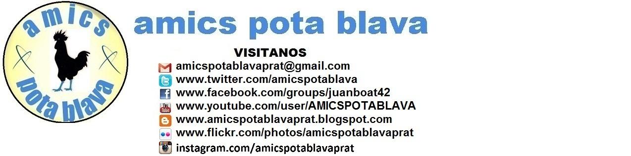 Amics PotaBlava Prat