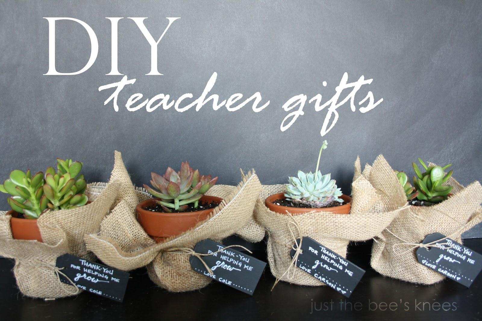 math worksheet : diy succulent teacher gift  crafthubs : Homemade Christmas Gifts For School Teachers