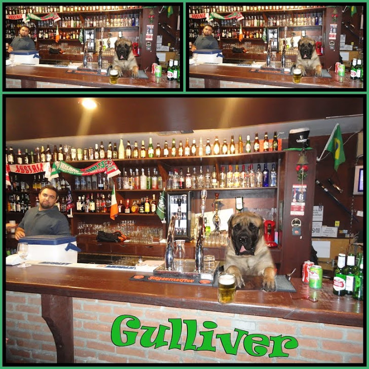 Mascote do Revolution Pub (GULLIVER)