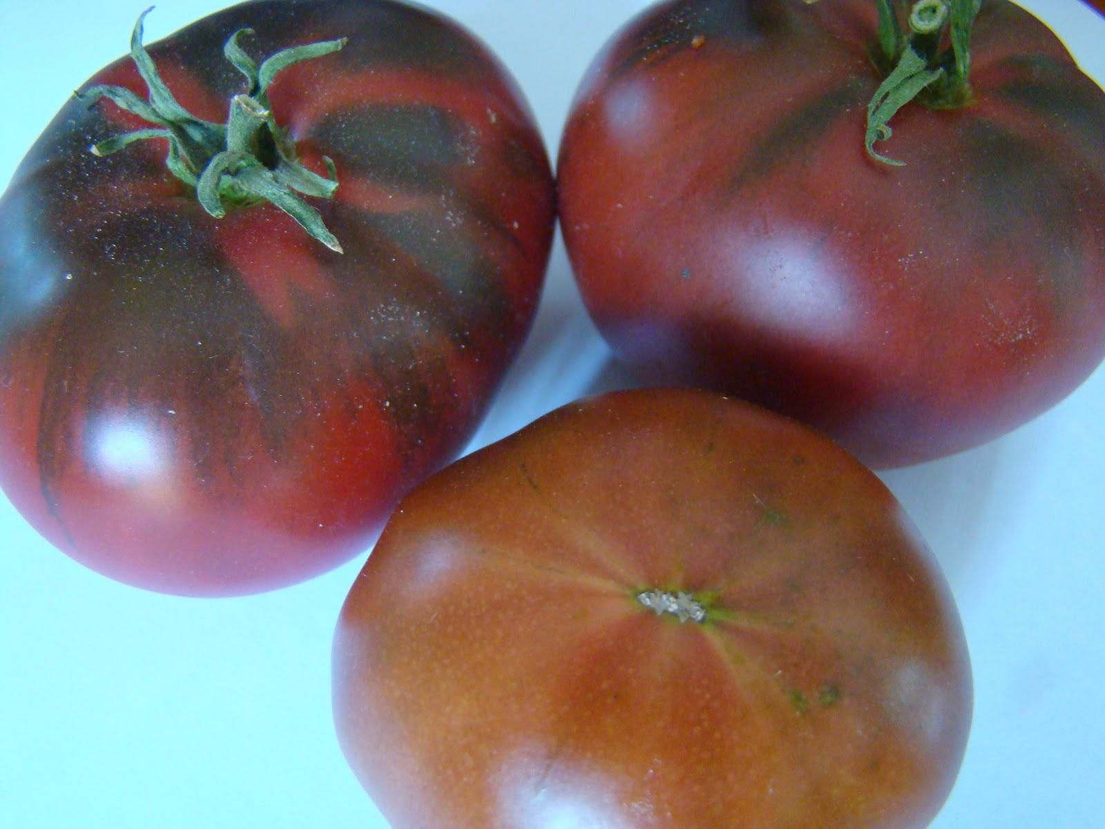 Tomate noire de Crimée troc aux plantes