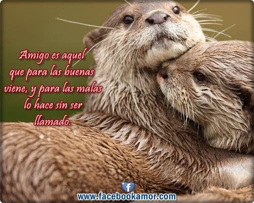 frases lindas de amistad con imagenes para facebook - Imagenes Lindas De Amistad Para Facebook