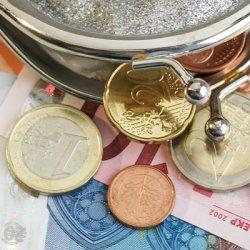 porte-monnaie avec des euros