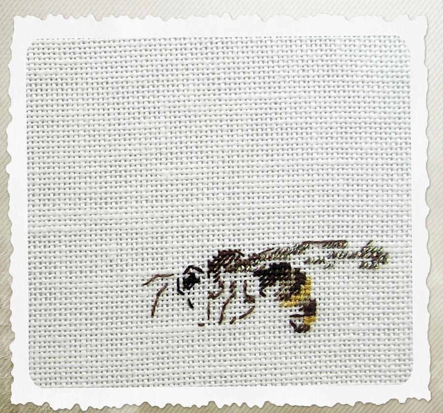 Пчела вышивка гладь схема
