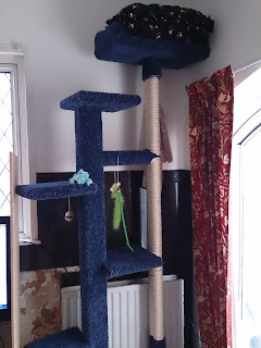 DIY how to make cat tree scratcher scratching post platform climbing carpet homemade handmade