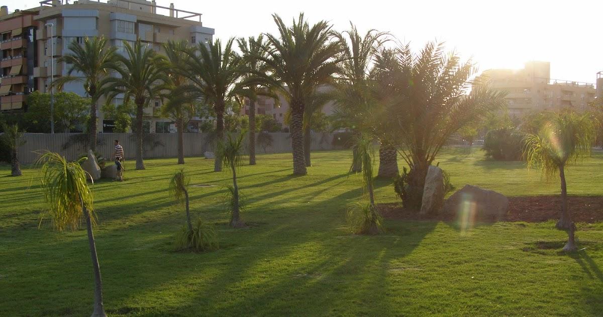 San Vicente del Raspeig con niños: El Parque L'hort de Torrent (también llamado Lo Torrent