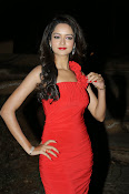 Glamorous Shanvi latest photos in Red-thumbnail-18